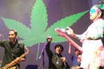 Cheech & Chong - Up In Smoke Tour